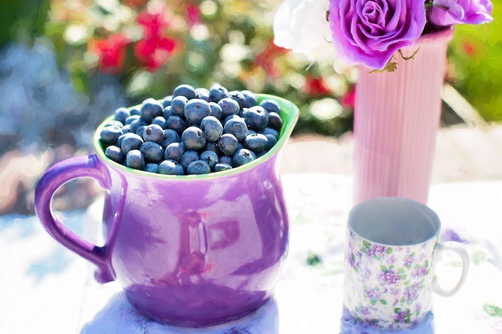 purple blueberries summer fruit fresh